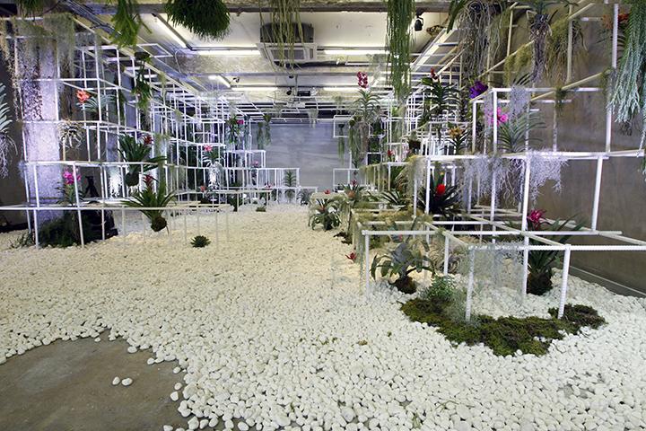 '버려진 테마파크'라는 테마로 진행됐던 15번째 'Overgrownpark' 퀀텀 프로젝트. 정글짐 사이에 무성하게 자라난 식물들을 설치, 전시 기간 내에 공간을 방문하는 고객에게 드라이플라워를 제공했다. 전시 마지막 날에는 설치된 에어 플랜트를 방문객과 함께 나누는 클로징 파티를 진행하기도 했다.