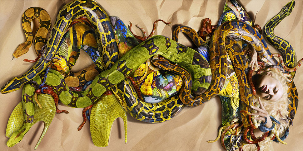 닉 나이트, Snakes for Alexander McQueen,  ⓒ NICK KNIGHT