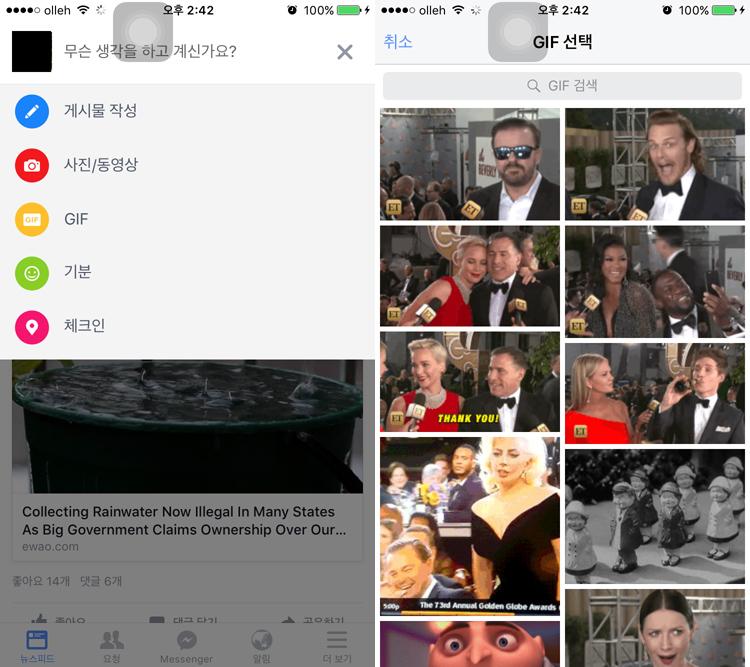 페이스북앱의 GIF 검색 기능