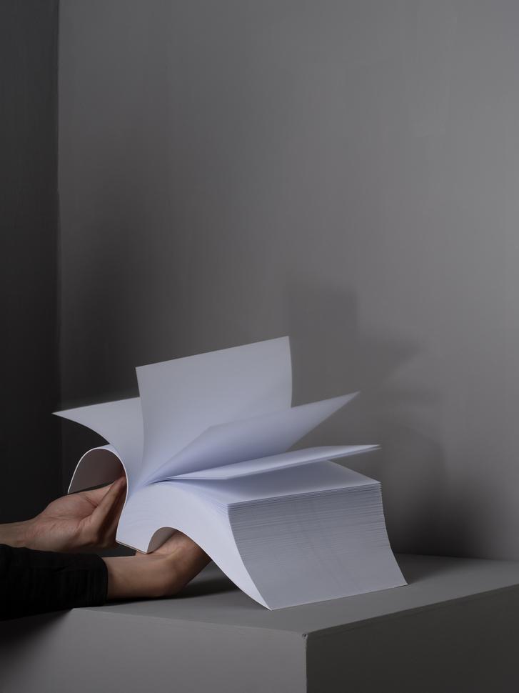〈새와 우산 n.40〉, 아카이벌 피그먼트 프린트, 101x76cm, 2015