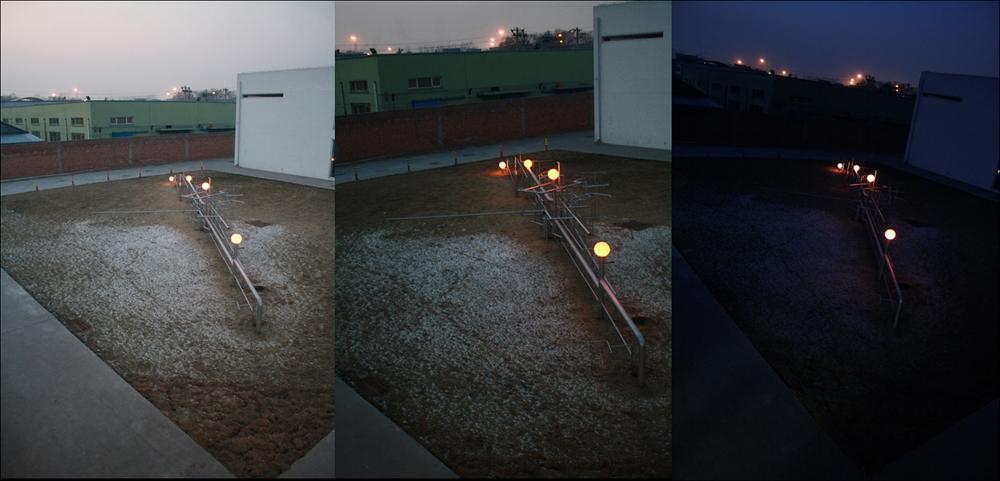 김시하, 〈꽃피는 젊은 예술(blooming young art)〉, 700x650x900, 2012