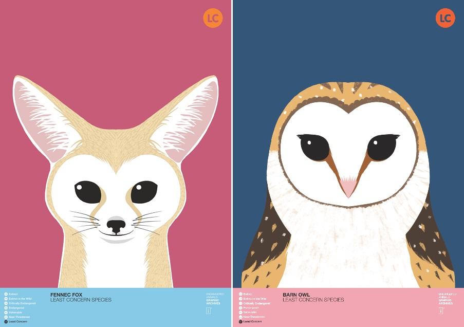 사막여우(Fennec fox)와 원숭이 올빼미(Barn Owl)