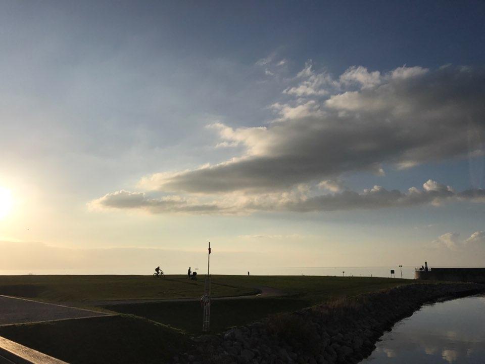 베스트라함넨 주변으로 조성된 해변 공원. 스웨덴 공원에서 가장 많이 보이는 것은 아마도 자전거, 유모차, 애완견이 아닐까 싶다.  (사진 4)